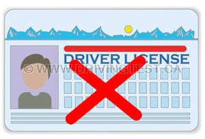how to see how many points are on your license